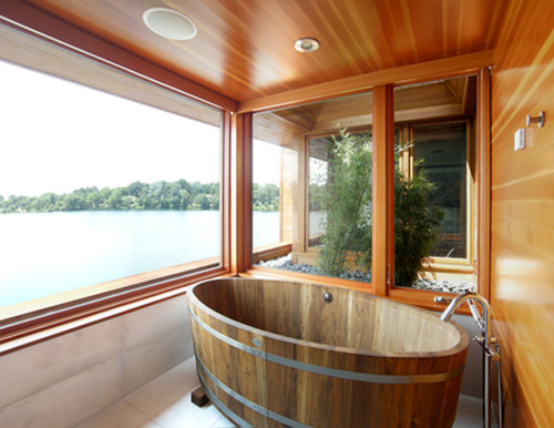 Master Bathing Suite contemporary bathroom