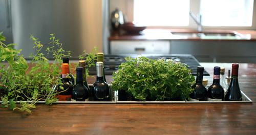 Planter Detail contemporary kitchen
