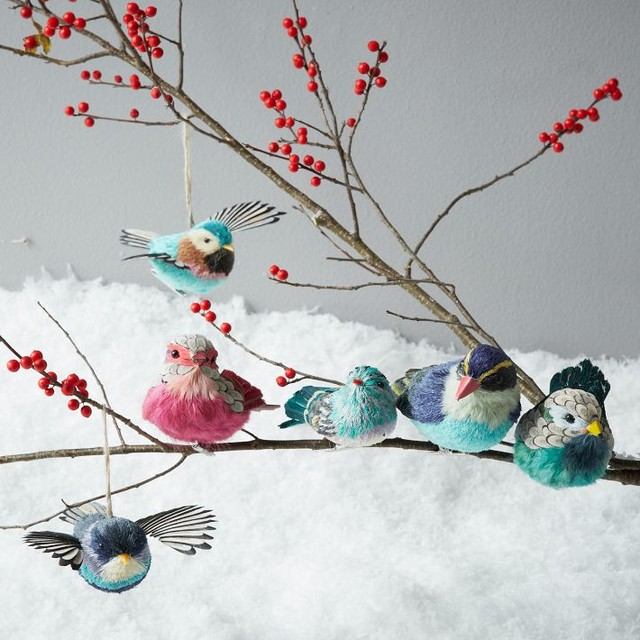 Outdoor Parrot Decorations