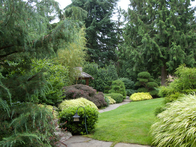 Evergreen Plants Landscaping Ideas Small Garden Design Gardening