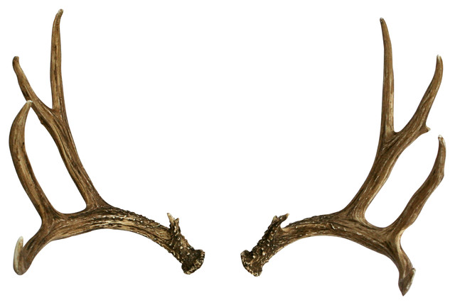 Deer Antler Home Decor