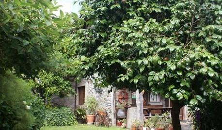 Jardín de la semana: Una finca repleta de historias en Asturias