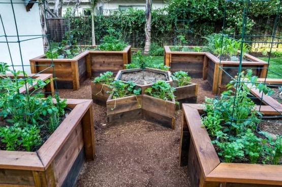 Классический Сад by Casa Smith Designs, LLC