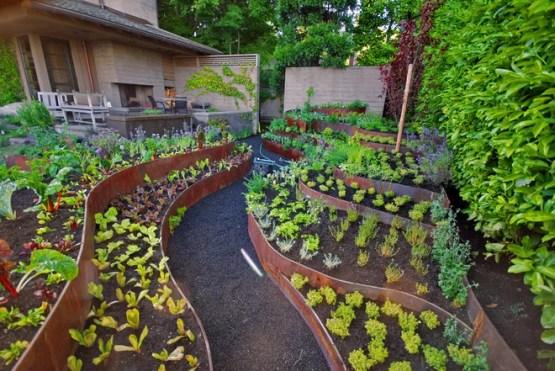 Современный Сад Contemporary Landscape