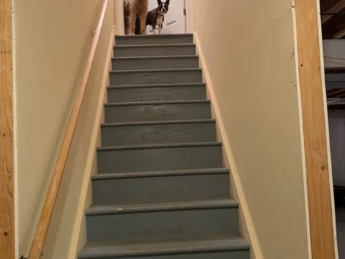 Am I Crazy To Replace Our Basement Stairs | Staircase Replacement Near Me | Deck | Handrail | Carpeted Stairs | Riser | Stair Runner