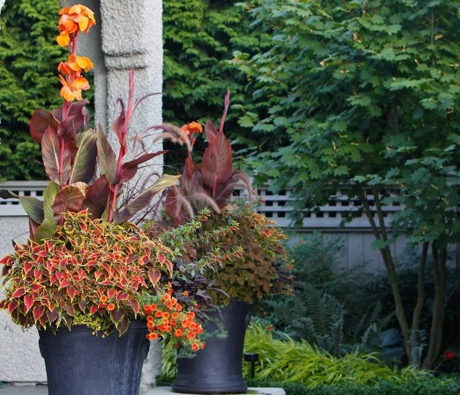 Traditional Landscape by Pot Incorporated