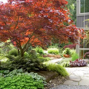 75 Beautiful Orange Landscaping Pictures Ideas August 2020 Houzz