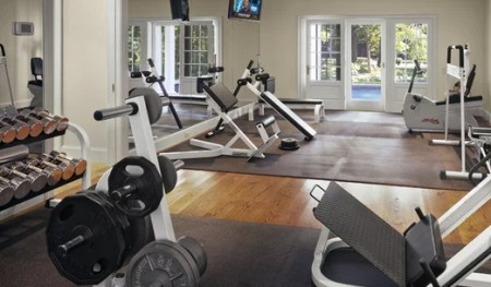 Home Gym Design Ideas   Remodeling Pictures   Houzz Home Gym Ideas