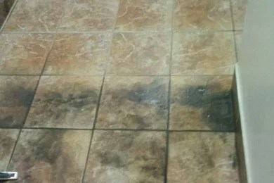 2fresh tile cleaning milwaukee wi
