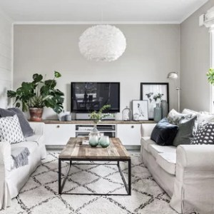 Small Living Room Design Ideas   Remodeling Pictures   Houzz Inspiration for a small scandinavian enclosed living room remodel in  Gothenburg with gray walls and a