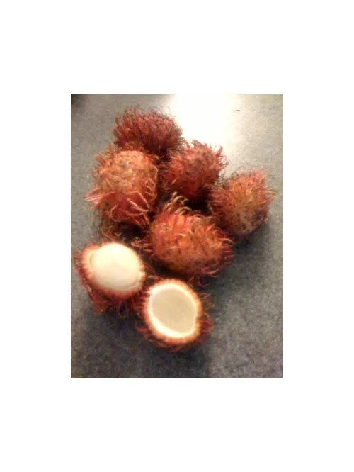 fresh rambutan in publix