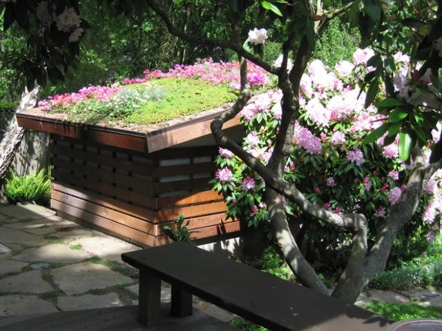 Модернизм Сад by Noland Landscape Design