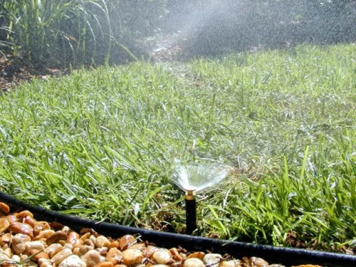 Landscape by Pacific Lawn Sprinklers
