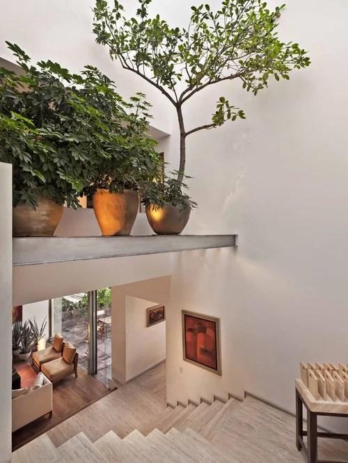 Apartment Decorating Houseplants