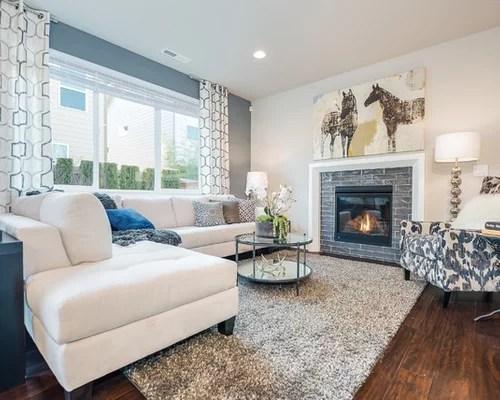 Blue Gray Living Room Ideas & Photos