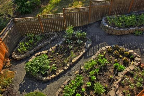 Современный Сад by Paradise Restored Landscaping & Exterior Design