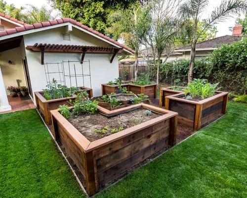 Vegetable Garden Layout Raised Beds Ranking Vegetables For