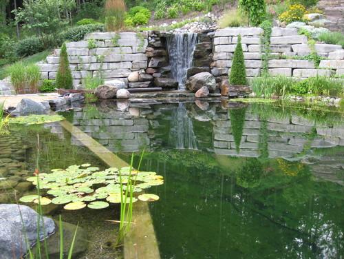 Piscine naturelle cascade