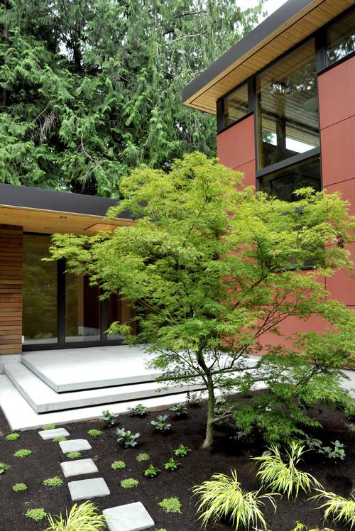 Perilstein Residence - Bainbridge Island Architect Coates Design