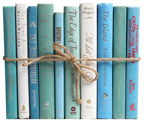 Modern Ocean ColorPak Decorative Books