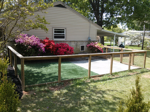 dog potty area guide tips and ideas
