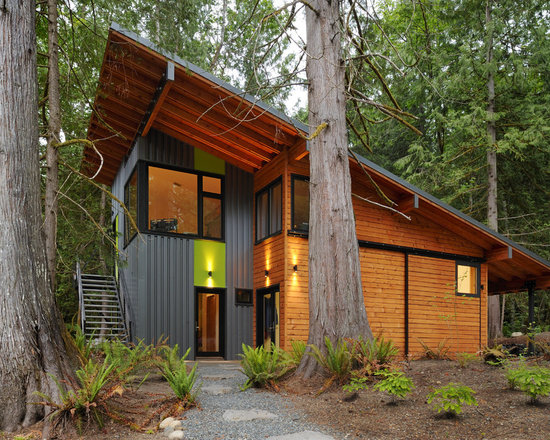 Shed Roof Home Design Ideas Pictures Remodel And Decor