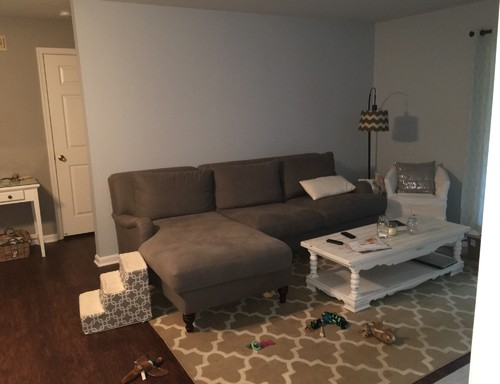 How Should I Decorate My Living Room?