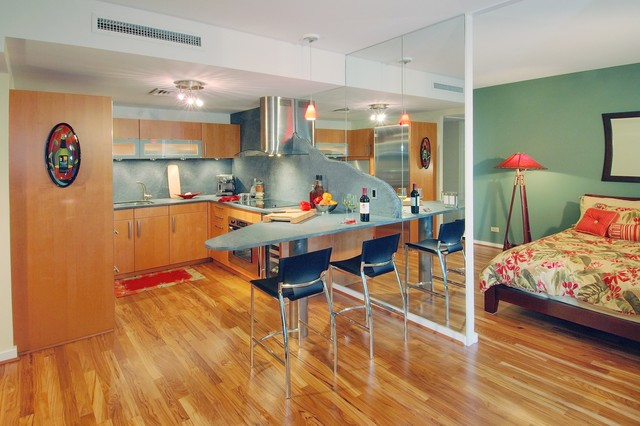 Compact Sophistication contemporary-kitchen