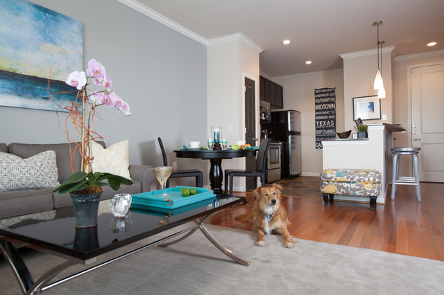 Young Professional Apartment Living