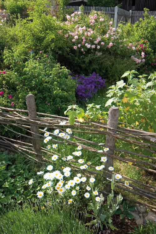 Recinzioni da giardino good recinzione da giardino in - Recinzione economica giardino ...