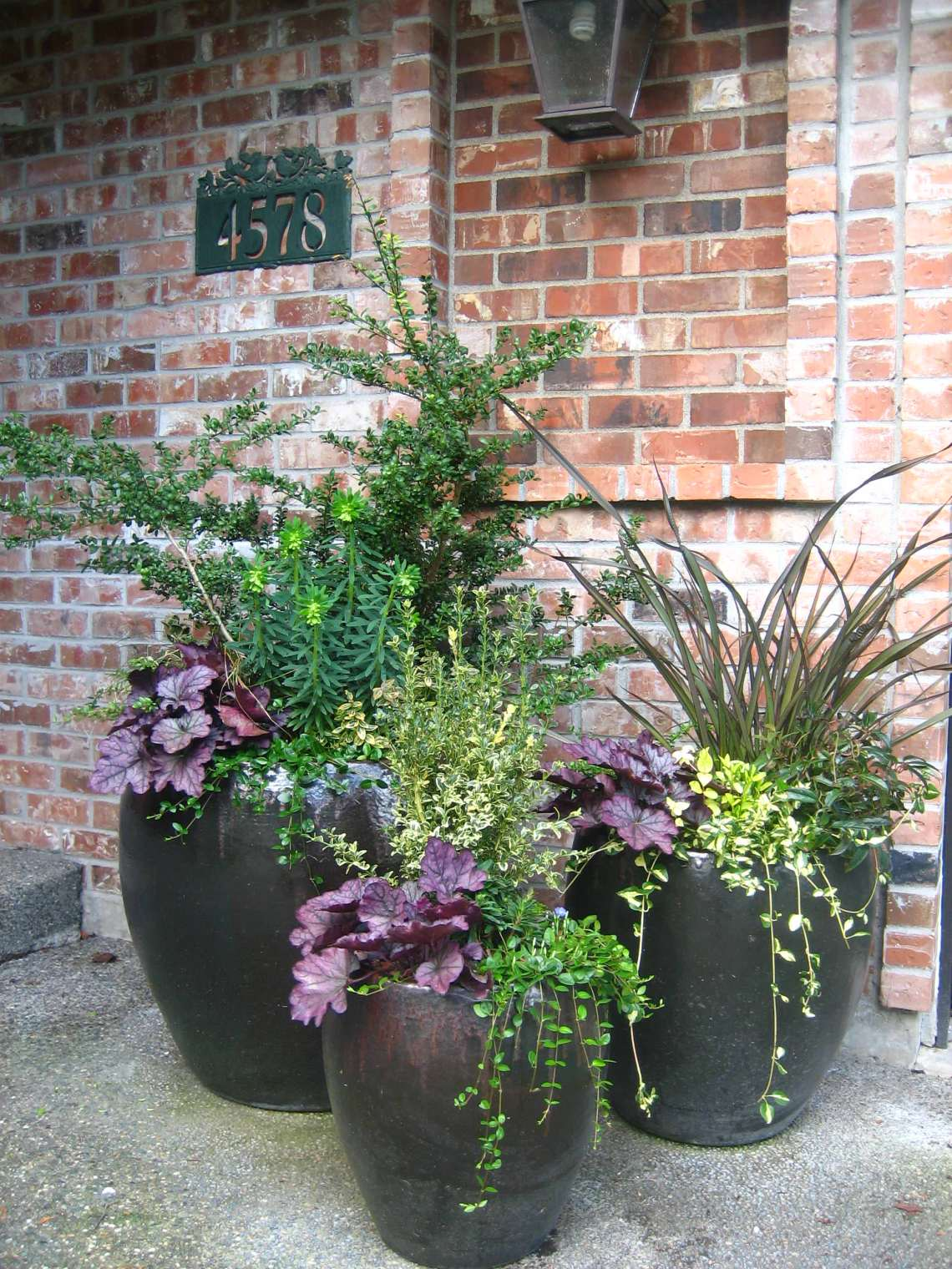 75 Beautiful Patio Container Garden Pictures Ideas August 2021 Houzz