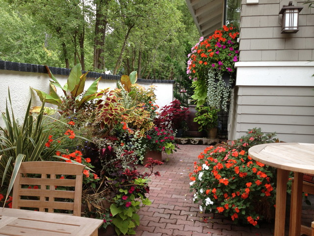 patio with container gardens