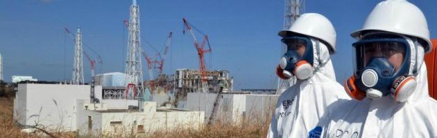 fukushima interna