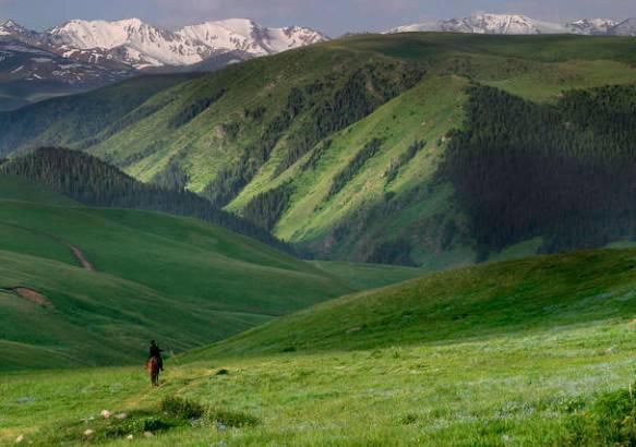 Зеленые горные пастбища.