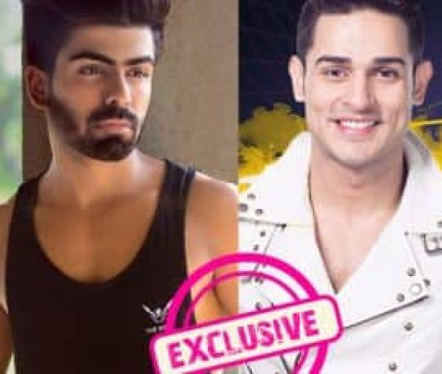 Akash Choudhary I Feel Priyank Divyas Relation Is Fake Watch Video