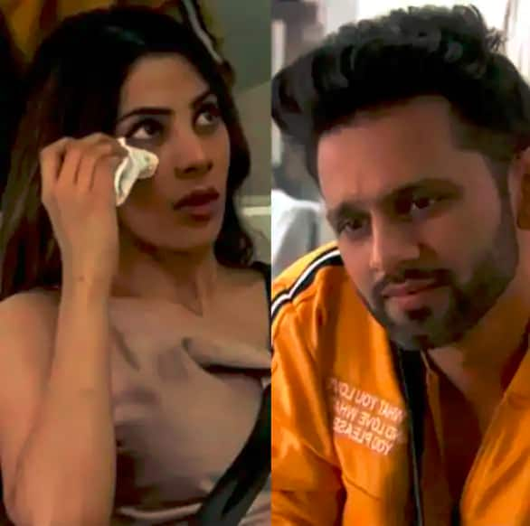 Trending Entertainment News Today —Nikki Tamboli allegedly fought with Rahul Vaidya over his underwear; Thalapathy Vijay fans declare Master a 'blockbuster'