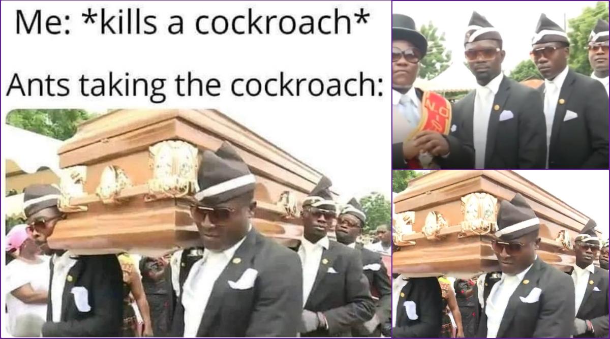 Dancing Funeral Coffin Meme Mp4 Hd Video Hd9 In