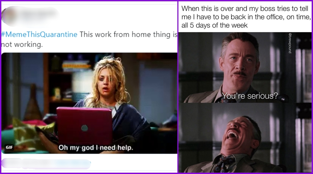 Work From Home Funny Memes These Hilarious Home Office Jokes And