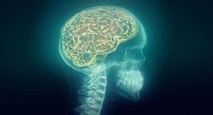 Study says human brain responds to aggressive voices more quickly