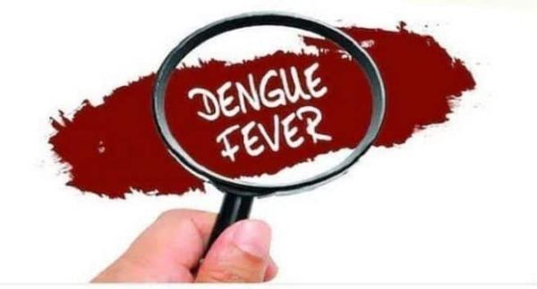 Dengue fever - mosquito-borne disease - treatment for dengue fever