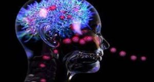 COVID-19 can cause brain damage, but the virus is not detected in the brain