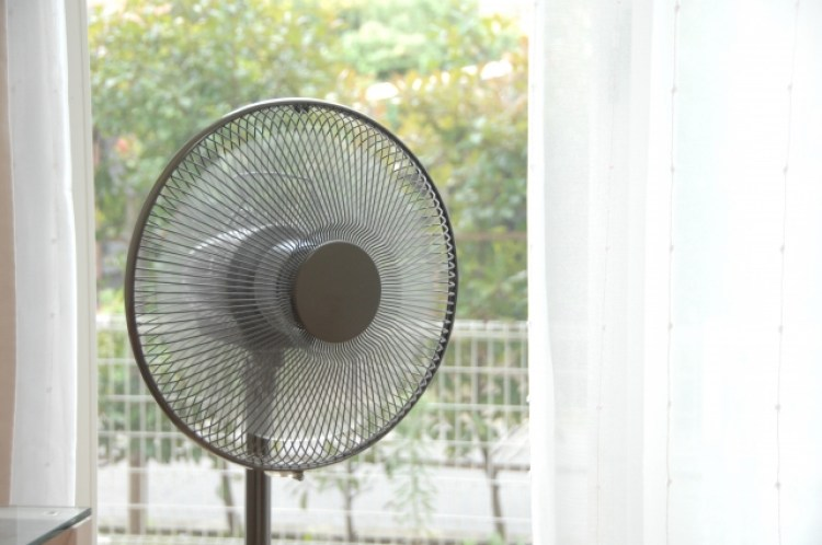 扇風機 掃除 方法 ホコリ