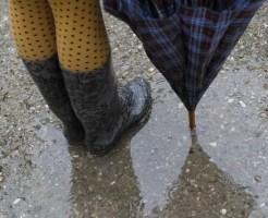 濡れた靴 早く 乾かす方法 ドライヤー グッズ