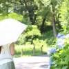 日傘の寿命はどのくらい?UV効果を持続させる方法と復活させる方法