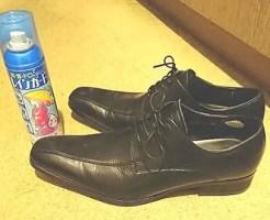 防水スプレー 靴 シミ 落とし方