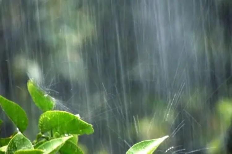 雨 憂鬱 原因 解消