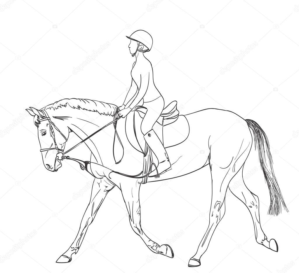 Cavalo Cavaleiro Linha Artistica De Desenho Tema De