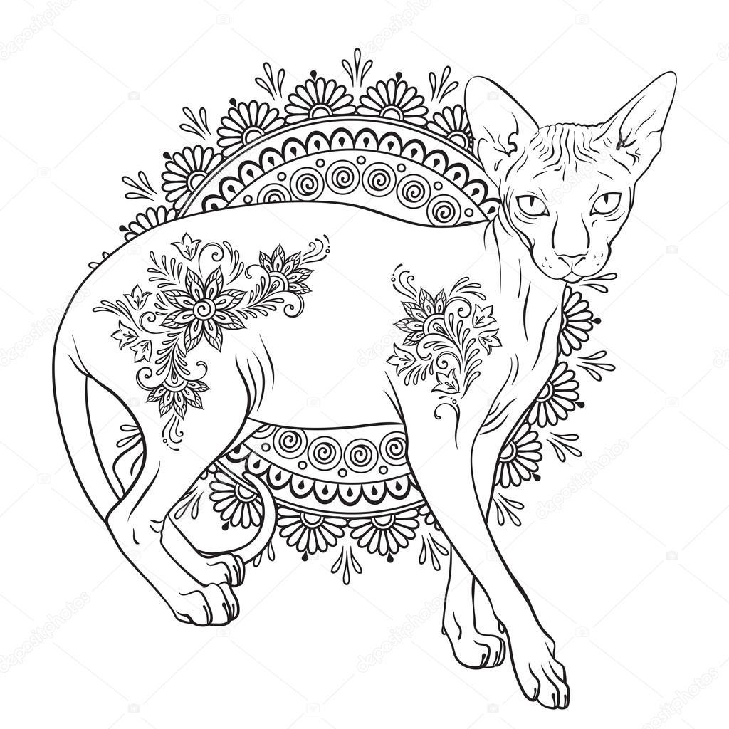 Disegni Da Colorare Gatto Sphynx Di Pagine Di Libro Con