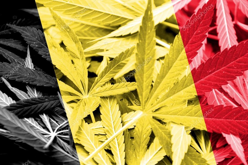 , Exploring the European Cannabis Scene (Part 3), ISMOKE