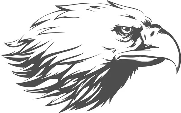 Áˆ Drawing Eagle Head Stock Drawings Royalty Free Eagle Head Cliparts Download On Depositphotos